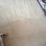 Carpet-Cleaning-Tinley-Park