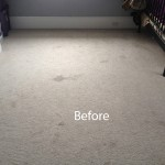 Cranberry Juice Stain Removal Tinley-Park A