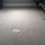 Cranberry Juice Stain Removal Tinley-Park B