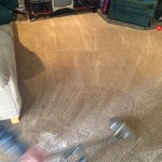 Dirty-Carpet-Cleaned-Tinley-Park