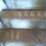 Tinley-Park-Stairs-Carpet-Cleaning