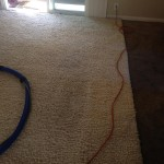 Tinley-Park-Traffic-Area-carpet-cleaners