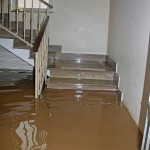 Tinley-Parkflood-in-house