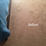 ink stain removal Tinley-Park-A