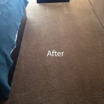 ink stain removal Tinley-Park-B
